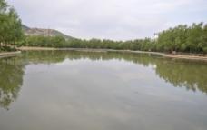 河流岸边倒影图片