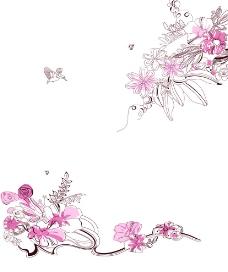 粉情花图片