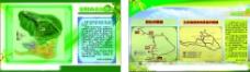 房地产规划图设计图片