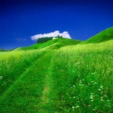 风景 蓝天 白云 草地