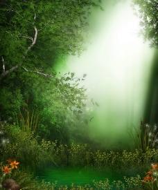 童话中的森林图片