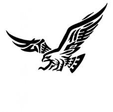 雄鹰翱翔艺术字图片