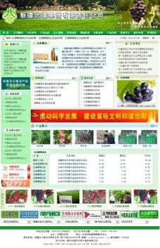 绿色果蔬psd网页图片