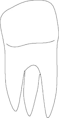牙齿简笔画图片大全