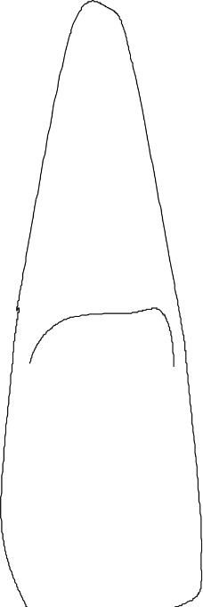 牙齿0051