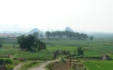 广西农村风光图片