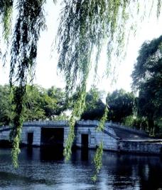西堤六桥4