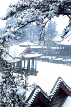 谐趣园冬景
