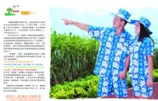 梦蓝椰 画册内页图片