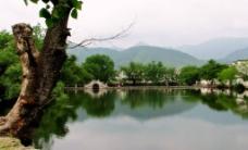 宏村印象图片