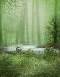 梦幻森林 树木 湖水图片