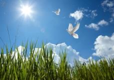 蓝天白云高清图片