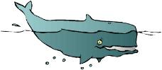 海洋动物0992