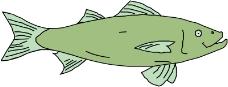 海洋动物1820