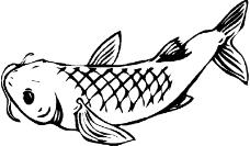 海洋动物1725