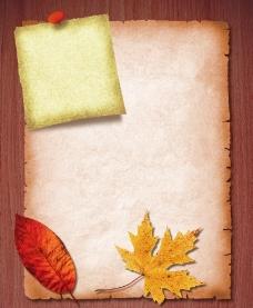 牛皮纸 枫叶 红叶图片