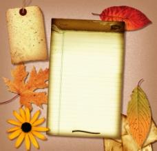 怀旧纸 牛皮纸 枫叶 红叶 花朵图片