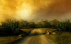 林间马路图片