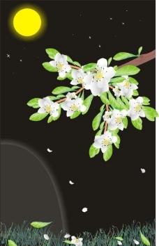 夜空下的梨花图片