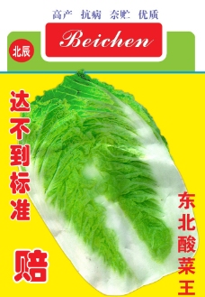 白菜种子图片
