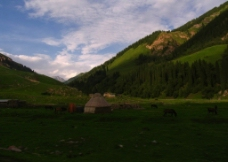 新疆 那拉提图片