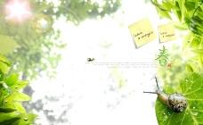 春天的故事 绿色图片