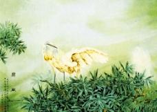 工笔花鸟国画图片