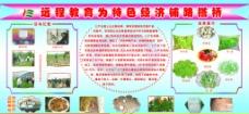七户乡远程教育版面图片