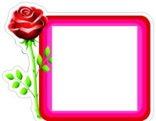 玫瑰开关贴图片