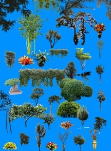 综合植物PS素材图片