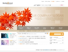 韩国网站模板秋天枫叶图片