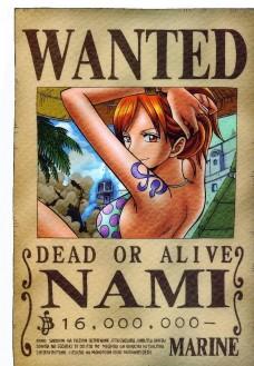 海贼王 通缉令 娜美