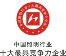 中国照明行业十大最具竞争力企业标志