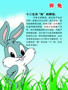 十二生肖兔图片